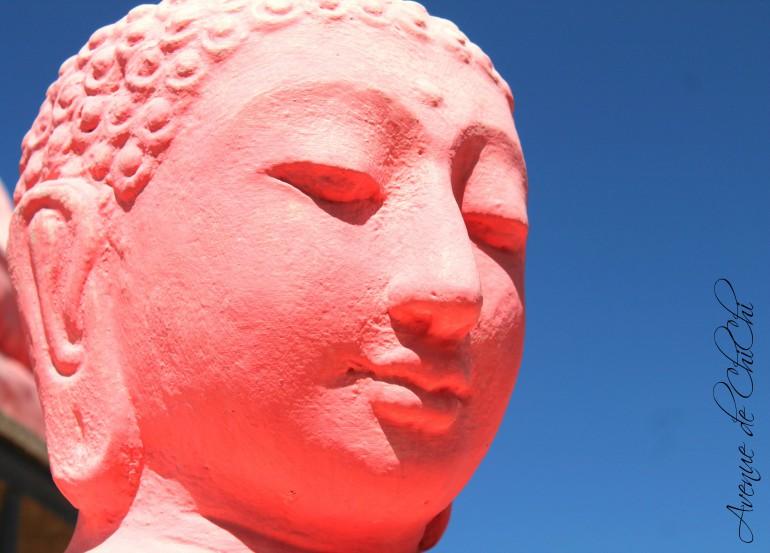 Buddha für Blog